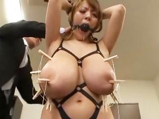 爆乳ペット秘書 Hitomi(田中瞳)